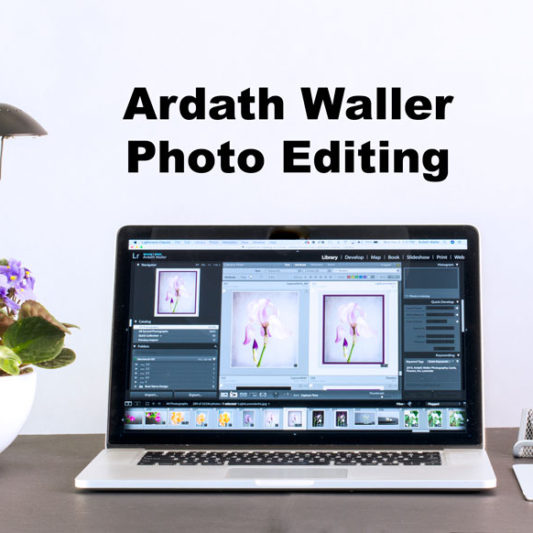Ardath Waller Photo Editing Desk Shot